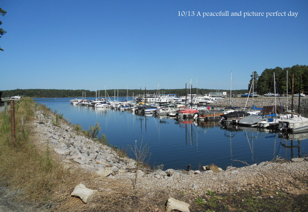Jordan Lake, NC Marina, Boat Rentals, & More
